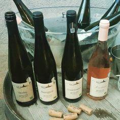 Lechburg Tasting @ Lovin' Winebar Wine Tasting, Wines, Summertime, Canning, Bottle, Flask, Home Canning, Jars, Conservation