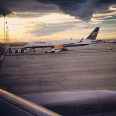Icelandic Invasion - @aviator147- #webstagram