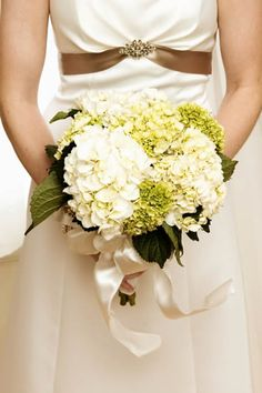 marriage bouquets: Preserved flowers are a quick affordable way to dress up any event.  Our discount Preserved Hydrangea Flowers have a variety of uses. Use as a wedding favor filler or add to your centerpiece to make it look amazing.  They are also great for adding a unique touch to your flower bouquet.  #timelesstreasure