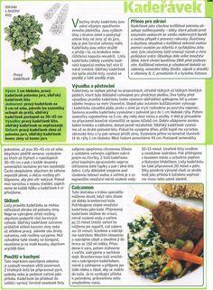 - Dieta Detox, Entertainment, Gardening, Vegetables, Health, Food, Health Care, Garten, Vegetable Recipes
