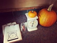 Investigations can become very intricate and detailed if you allow children the time to dig deep into their findings and wonderings. Autumn Activities, Math Activities, Early Childhood, Dig Deep, Photo And Video, Maths, Investigations, Pumpkins, Kindergarten