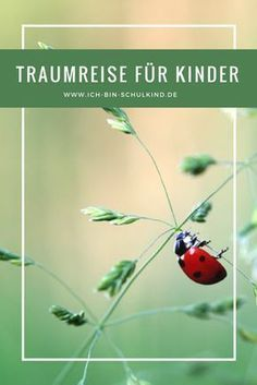 Traumreise für Kinder For relaxation from the stressful everyday life and for children who can not sleep well but we. Montessori Activities, Family Activities, Summer Activities, Outdoor Activities, Can Not Sleep, Sleep Well, Classroom Management Plan, Old Adage, Kids Health