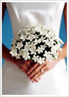 These pretty little white flowers, Stephanotis, are popular wedding bouquet additions!  Many think including them brings a bit of extra luck to your special day.