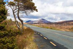The Wild Atlantic Way in Ierland. Geweldig! #photography #travelphotography #fotografie #canon #canonnederland #canon_photos #panasonic #travelling  #travelblog #reizen #reisjournalist #travelwriter #fotoworkshop #willemlaros.nl #reisfotografie #willemlaros #tw #fb  #moto73 #motor #suzuki #v-strom #MySuzuki #motorbike #motorfiets