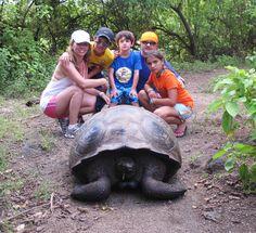Magical Galapagos  metropolitan-touring.com