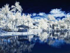 Zomerse landschappen die lijken op een 'winter wonderland'