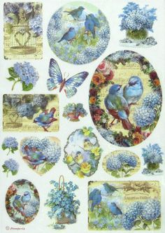 Ricepaper Decoupage Paper Scrapbooking Sheets Birds and Light Blue Butterfly | eBay
