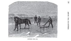 Nineteenth Century Ice Cutting, Part 2 – Kristin Holt   Lawrence's Adventures (Published 1871), page 20, image of horse-drawn ice-cutting work.