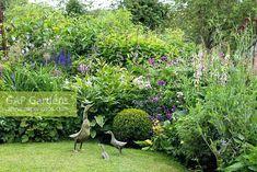 topiary box balls a mixed cottage garden border planted with geranium artificial topiary box balls