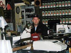 Joe's is dog friendly!
