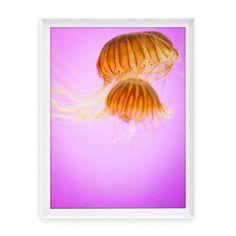 """This dreamy print makes me want to wander through the aquarium."" - Jodi #JodiMcKee"