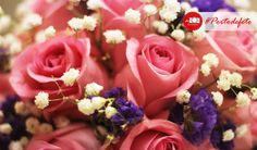 Fresh color of beauty flower smile emotikon  #nature #rose #flower #photography #portodefoto  defoto | Hadir Mengabadikan Momen Terindah Anda | follow twitter @deFoto3
