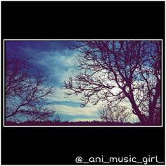 #blue #tree #cloud