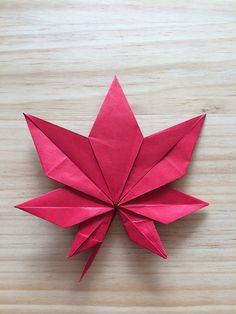 Origami flower marigold leaf instructions toshikazu kawasaki maple leaf seishi kasumi by yun geom kim mightylinksfo