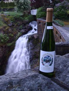Alaskan Wilderness Wines. Grab a bottle to take back home!