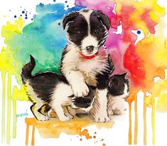 Border Collie Print 8x10 Dog print Dog art print  by BasovaArt