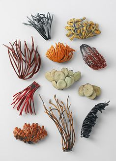 Julie Blyfield, brooches from the Pressed Desert Plant series 2005, sterling silver, oxidised sterling silver, enamel paint, wax, Photographer Grant Hancock