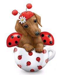 Limited-edition dachshund figurine inspired by Kayomi Harai artistry. Darling doxie dressed as ladybug with handcrafted details and expressive eyes. Dachshund Puppies For Sale, Dachshund Breed, Dachshund Quotes, Dachshund Funny, Dachshund Shirt, Long Haired Dachshund, Dachshund Gifts, Dachshund Love, Teacup Dachshund