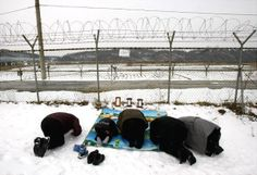 South Koreans kneel down and bow in front of the barbed wire fence to respect their family members living in North Korea as they celebrate the Lunar New Year at the Imjingak Pavilion, near the demilitarized zone of Panmunjom, in Paju, South Korea.