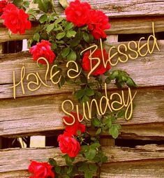 Happy Sunday Images Quotes and Greetings Happy Sunday Hd Images, Good Morning Greetings Images, Good Morning Sunday Images, Good Morning Happy Sunday, Sunday Greetings, Have A Blessed Sunday, Happy Sunday Quotes, Sunday Love, Good Morning Flowers