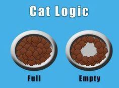 猫あるある02 猫の基準 左:いっぱい 右:空っぽ  すごくわかる!!謎が解けた!