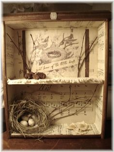 Song birds shadow box. Make of the different birds of the area. What they look like, what their eggs and nest looks like, what they eat. Somehow have to figure out how to get their song in there.