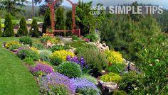 garden tips by region - steep-incline