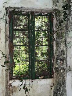 Historias pacientes: Casa abandonada