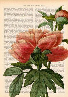 upcycled flower art print #Anthropologie #FlowerShop