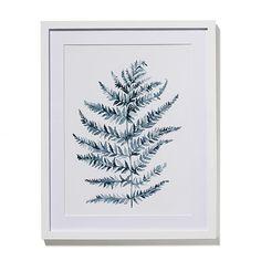 Watercolour Foliage Print Pine Fern