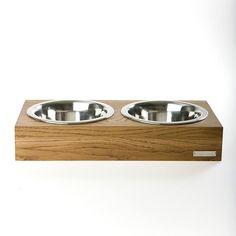 modern dog dish