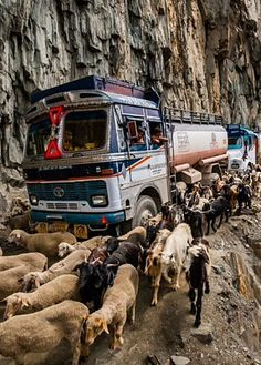 Zojila Pass . India ... Been here once...lovely scenic beauty