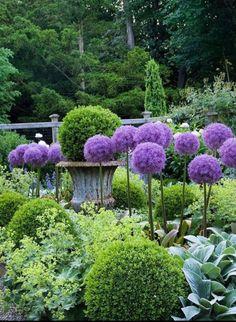 Always pretty pocket garden featured in my first book, In the… - Gartengestaltung Purple Garden, Shade Garden, Formal Gardens, Outdoor Gardens, Pocket Garden, Garden Cottage, Garden Features, Water Features, Front Yard Landscaping