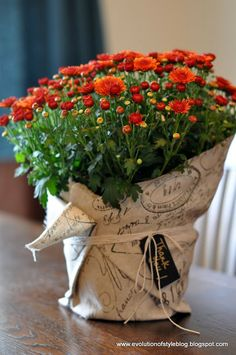 Fast and easy Fall hostess gift .. a beautifully wrapped potted mum - Add a chalkboard tag!