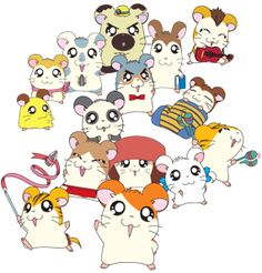 All Hamtaro hamsters