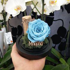 Χαρίστε ένα μοναδικό δώρο στον αγαπημένο σας μπαμπά, ένα δώρο, που θα του θυμίζει αυτή τη στιγμή για χρόνια. Ένα αληθινό τριαντάφυλλο που διαρκεί χωρίς να χρειάζεται περιποίηση!  Αποστολή λουλουδιών σε όλη τη Θεσσαλονίκη κάθε ημέρα και την Κυριακή. 🛒 www.anthos.com.gr  Το φυσικό μας κατάστημα θα είναι ανοιχτό και την Κυριακή, ωστέ να διαλέξετε το ομορφότερο δώρο! #infinityrose #flowers #gift #giftideas #thessaloniki #thessalonikimou #foreverrose #rose #λουλουδια_παντου #αποστολήλουλουδιών… Cake, Desserts, Food, Tailgate Desserts, Deserts, Kuchen, Essen, Postres, Meals