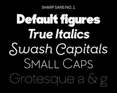 Village: Sharp Sans No. 1