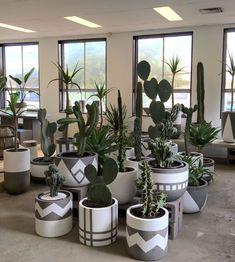 Balcony Plants, House Plants Decor, Plant Decor, Potted Plants, Indoor Plants, Paint Garden Pots, Painted Plant Pots, Painted Flower Pots, Cement Flower Pots