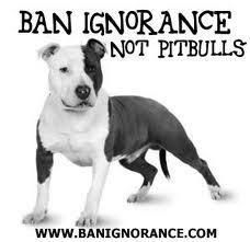 Agreed. It's the senseless humans who own and abuse them that are the problem. Some people should not have dogs period.