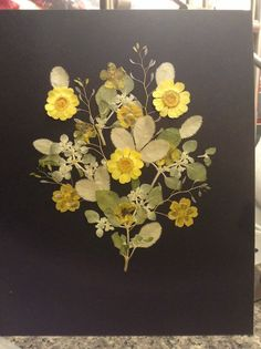 Pressed flower art on black, with wild yellow daisies, silver leaf, and some things I picked locally.