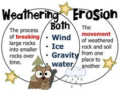 Weathering and Erosion venn diagram Fourth Grade Science, Primary Science, Middle School Science, Elementary Science, Science Classroom, Teaching Science, Science For Kids, Teaching Geography, Science Resources
