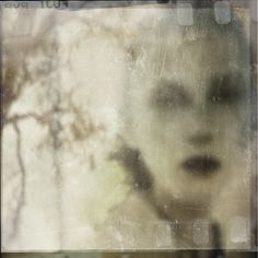 How Long Will This Storm Go On?, Création de Antonio Palmerini