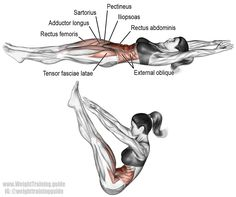 V up. This is an advanced core exercise. Main muscles worked: Rectus Abdominis, Obliques, Iliopsoas, Tensor Fasciae Latae, Pectineus, Sartorius, Rectus Femoris, Adductor Longus, and Adductor Brevis.