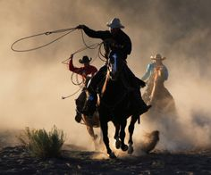 Are there any Rodeo lovers out there? If so , then get ready to watch more thrilling and exciting Rodeo sporting events live!! like Team Roping, Barrel racing, Steer wrestling, Tie Down roping, Bull riding, Saddle bronc riding, and Bareback Bronc Riding. Find your nearest Rodeo event at   http://www.ticketsmate.com/sports-tickets/rodeo
