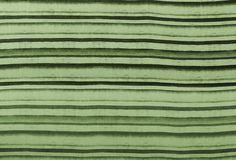 PETER'S STRIPE / Matcha