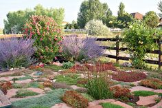 Pollinator-friendly perennials provide color and food in a flagstone patio  instead of a lawn. xeriscape