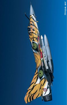Mirage 2000, Tiger Meet
