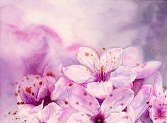 Cherry Blossom by SuisaiGenki.deviantart.com on @DeviantArt