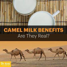 12 great costa camel milk health benefits images camel health rh pinterest com