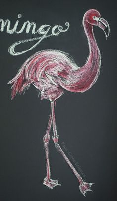 Chalk Borad Art: Flamingo from Paper Crane Scissors